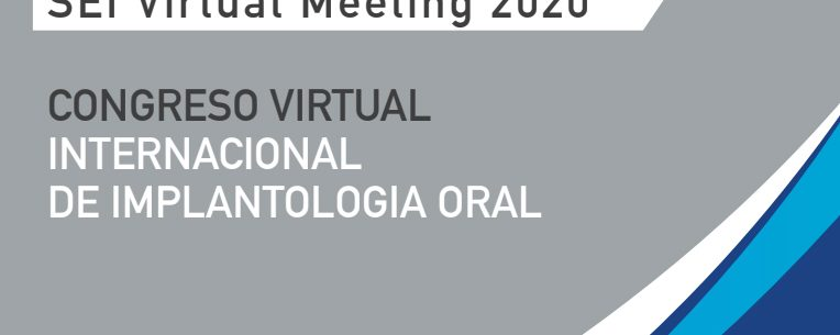 SEI Virtual Meeting 2020